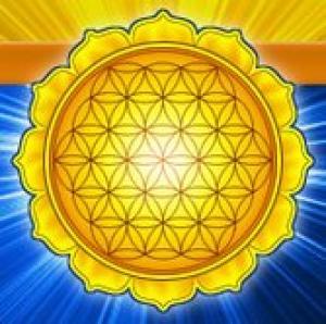 sun flower of life