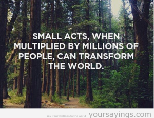 Small Acts Multiplied can transform the world