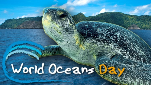CelebrateWorldOceansDay_VideoThumb
