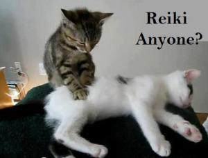reiki anyone